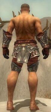 Warrior Asuran Armor M gray arms legs back