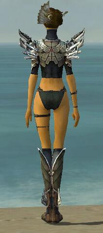 File:Assassin Asuran Armor F gray chest feet back.jpg