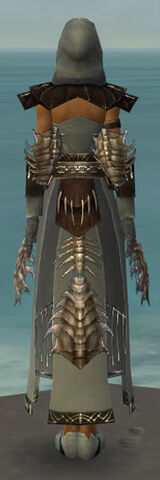 File:Dervish Primeval Armor F gray back.jpg