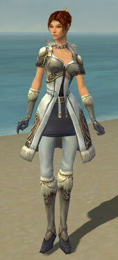 Elementalist Norn Armor F gray front