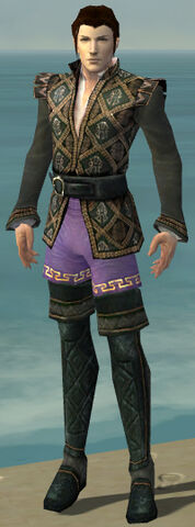 File:Mesmer Elite Noble Armor M gray chest feet front.jpg