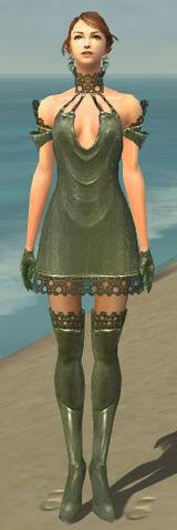 File:Mesmer Enchanter Armor F gray front.jpg