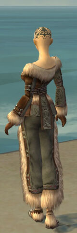 File:Monk Norn Armor F gray back.jpg