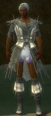 Elementalist Primeval Armor M gray chest feet front