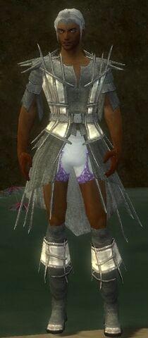 File:Elementalist Primeval Armor M gray chest feet front.jpg