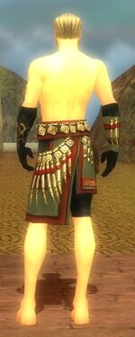 Ritualist Elite Canthan Armor M gray arms legs back