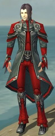 File:Elementalist Asuran Armor M dyed front.jpg