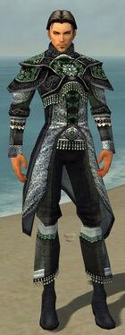 Elementalist Elite Luxon Armor M dyed front
