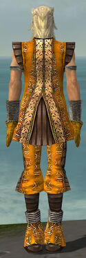 Elementalist Istani Armor M dyed back
