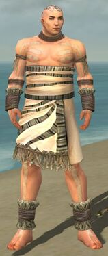 Monk Istani Armor M gray front