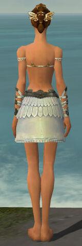 File:Paragon Istani Armor F gray arms legs back.jpg