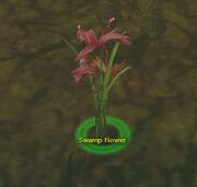 Swampflower
