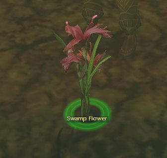 File:Swampflower.jpg