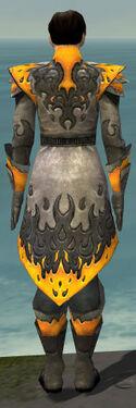 Elementalist Flameforged Armor M dyed back