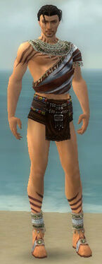 Ritualist Exotic Armor M gray chest feet front