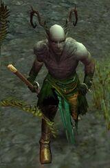 Warden of Earth