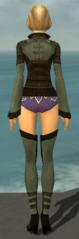 File:Mesmer Istani Armor F gray chest feet back.jpg