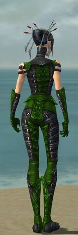 File:Necromancer Ascalon Armor F dyed back.jpg