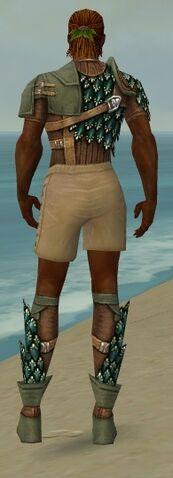 File:Ranger Drakescale Armor M gray chest feet back.jpg