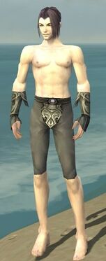 Elementalist Monument Armor M gray arms legs front