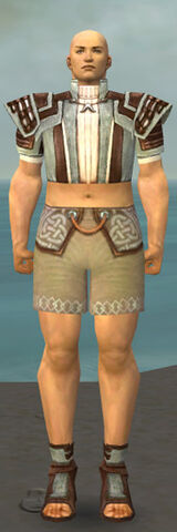 File:Monk Censor Armor M gray chest feet front.jpg