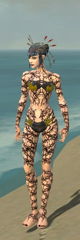 File:Necromancer Elite Scar Pattern Armor F dyed front.jpg