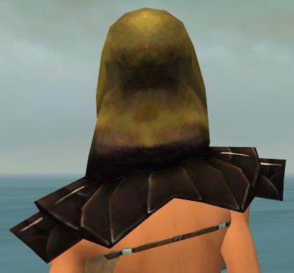 File:Dervish Primeval Armor F dyed head back.jpg