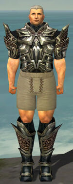 Warrior Elite Kurzick Armor M gray chest feet front