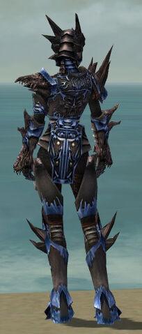 File:Warrior Primeval Armor F dyed back.jpg