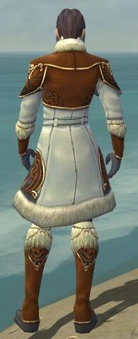 File:Elementalist Norn Armor M dyed back.jpg