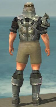 Warrior Elite Templar Armor M gray chest feet back