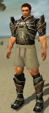 Warrior Kurzick Armor M gray chest feet front