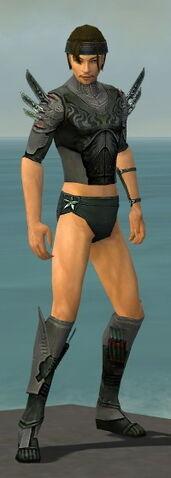 File:Assassin Imperial Armor M gray chest feet front.jpg