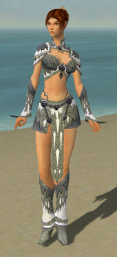 Elementalist Iceforged Armor F gray front