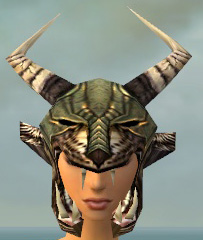 File:Warrior Elite Charr Hide Armor F gray head front.jpg