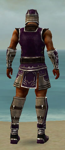 File:Warrior Istani Armor M dyed back.jpg