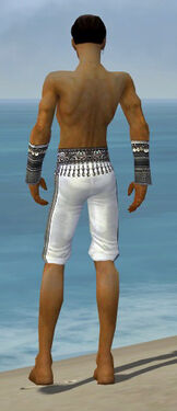 Elementalist Luxon Armor M gray arms legs back