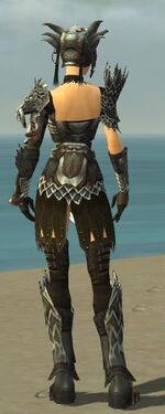 Warrior Silver Eagle Armor F gray back