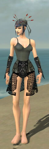 File:Necromancer Cabal Armor F gray arms legs front.jpg