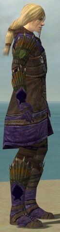 File:Ranger Elite Druid Armor M dyed side.jpg