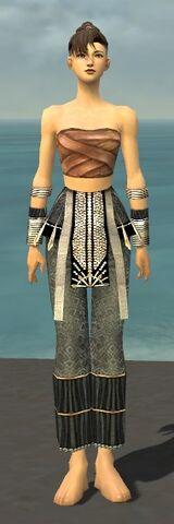 File:Monk Elite Sunspear Armor F gray arms legs front.jpg