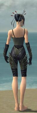 Necromancer Krytan Armor F gray arms legs back