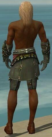 File:Ranger Elite Luxon Armor M gray arms legs back.jpg