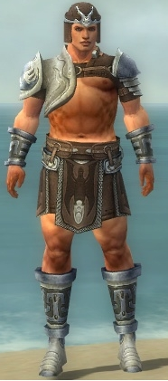File:Warrior Gladiator Armor M gray front.jpg