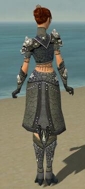 Elementalist Elite Stoneforged Armor F gray back