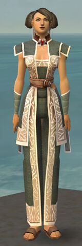 File:Monk Tyrian Armor F gray front.jpg