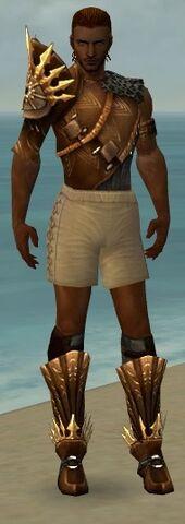File:Ranger Elite Sunspear Armor M gray chest feet front.jpg