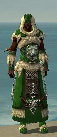 File:Dervish Norn Armor M dyed front.jpg