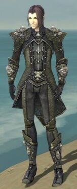 Elementalist Elite Stoneforged Armor M gray front