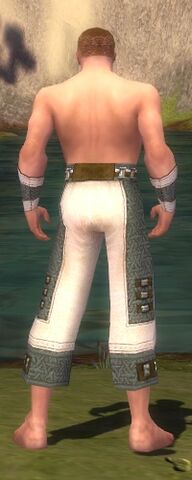File:Monk Elite Saintly Armor M gray arms legs back.jpg